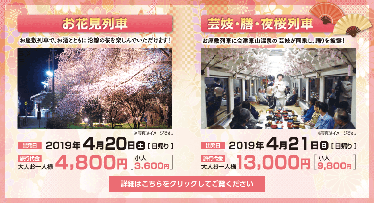 お花見列車/芸妓・膳・夜桜列車